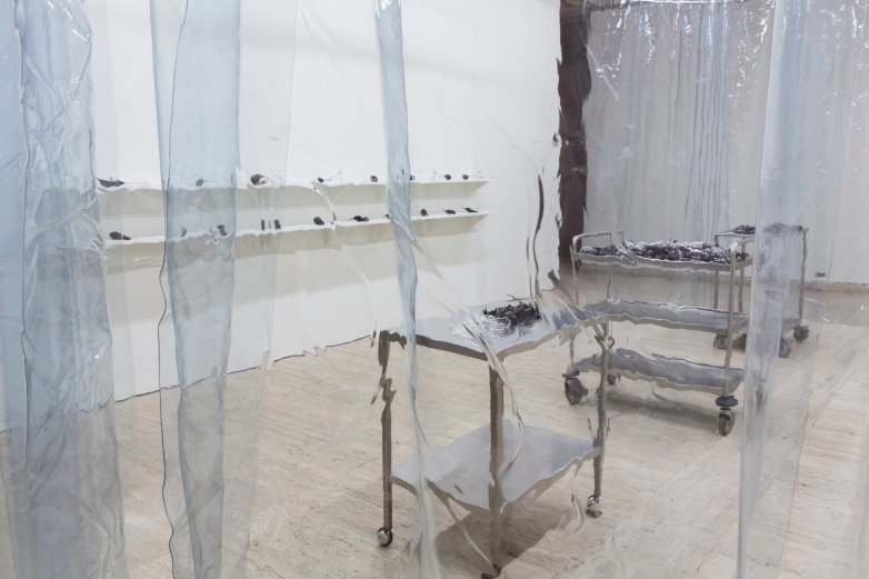 Yhonnie Scarce,  Weak in Colour But Strong in Blood , 2014, installation view, blown glass and found components, dimensions variable. Commissioned for the 2014 Biennale of Sydney and installed at the Art Gallery of New South Wales, courtesy the artist and dianne tanzer gallery + projects. Photography by Janelle Low.