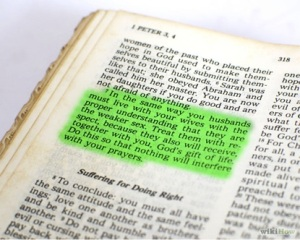 biblewives